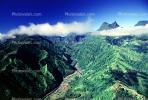 Island of Tahiti, Rain Forest, Mountains, NDPV01P06_01