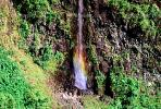 Island of Tahiti, Waterfall, Rain Forest, NDPV01P07_03