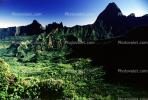 Mountains, Rain Forest, Island of Tahiti, NDPV01P07_18