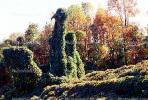 Kudzu, trees, fall colors, autumn, NLKV01P02_04