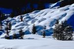 smooth snow, hills, Forest, Snow, Mountains, Trees, Cold, Frozen, Snowy, Winter, Wintry, NNIV01P04_08.0932