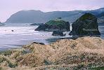 Meyers Creek Beach, Pacific Ocean, Seascape, Rock, Outcrops, NNOV01P06_18