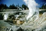 geochemically extreme conditions, Geyser, Hot Vent, sulpher, springs, moss, hot water, NNYV06P05_09