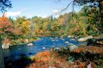 Stream, River, Woods, Forest, Deciduous Trees, Fall Colors, autumn, rocks, stone, NOEV01P10_15
