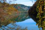 Reflecting Lake, Woodland, Forest, Trees, Hill, autumn, water, deciduous, NORV01P02_18.1260