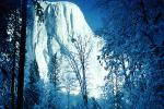 El Capitan, Snowy Trees, Valley, Forest, Winter, Granite Cliff