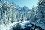 Smooth Snow Covered Rocks, Merced River, Snowy Trees, Valley, Forest, Winter, Woodland, NPYV02P02_02