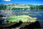 Sprague Lake and the Continental Divide, water, NSCV02P04_05