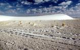 White Sands National Monument, New Mexico, NSMV01P05_15