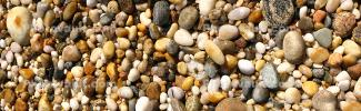 Shells, Beach, Rocks, Pebbles, Orient Point, Long Island, New York, Panorama, Wet, Liquid, Water, NWED01_140