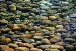 Group of Rocks in a Stream, Water, cool, clear, NWED02_175