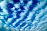 Altocumulus Clouds, daytime, daylight, orderly, in line, in-line, marching, organized, NWSV15P12_05.0624