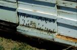 Bee Keeping, Honey Bee, Davis, California