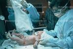 New Born Baby, Newborn, Babies, Infant, Childbirth, girl, female, PABV02P13_07