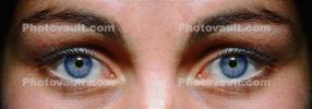Face, Eyeball, Iris, Lens, Pupil, Eyelash, Cornea, Sclera, Female, Woman, Eye Brow, Eyebrow, Panorama, PACV02P02_02E