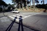 Shadows on the Road, Crosswalk, PAFV07P12_18