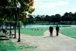 Men Walking on a path, lake, pond, park, trees, PBTV04P04_07