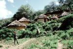 Village, Thatched Roof House, Home, Grass Roofs, Building, roundhouse, house, Sof Omar, Holy Caves, Sod, PDEV01P07_06