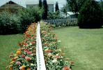 Divided Garden, Flowers, Backyards, Picket Fence, lawn, PDEV01P08_12