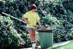 Garden, Rake, raking, boy, teen, tween, Pacific Palisades, California, 1970s, PDGV01P01_04