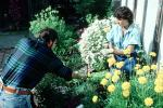 Couple working in the garden, Woman, Man, PDGV01P01_14
