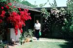 backyard, garden, woman watering plants, bougainvillea, PDGV01P04_05
