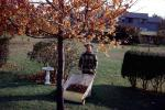 Autumn, Backyard, Yardwork, Man, PDGV01P07_16