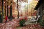Backyard, raking leaves, lounge chair, PDGV01P07_18