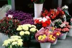 Flower Stand, floral, PDVV01P03_05