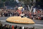 Oregon State Beaver, Football, Rose Parade, 1950, 1950's