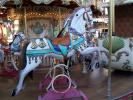 Carousel, Merry-Go-Round, PFTD01_001