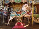 Carousel, Merry-Go-Round, PFTD01_003