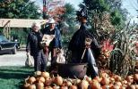 Scarecrow, Pumpkins, Witch, boiling pot, PHHV02P05_13