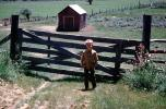 Gate and Fence, Hut, fields, shed, 1950s