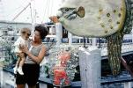 Dock, Pier, Fishing Boats, Daughter, legs, 1960s, Oceanic Sunfish