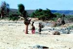 Gathering Wood, Refugee Camp, near the Ethiopia Somalia border, African Diaspora, Desertification