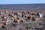 Refugee Camp, near the Ethiopia Somalia border, African Diaspora, Desertification, Sod