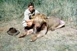 Male Lion, poaching, Poacher, Hunter, poached, Africa, African, 1951, 1950s, PRGV01P10_10