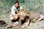 Male Lion, poaching, Poacher, Hunter, poached, Killers, Kill, Killed, Africa, African, 1951, 1950s, PRGV01P10_10B