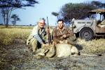 Female Lion, poaching, Poacher, Hunter, poached, rifle, African, Africa, 1951, 1950s, PRGV01P10_14
