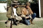 Ducks, rifle, shotgun, Hillbillies, Jed Clampet, 1950s, PRGV01P11_14