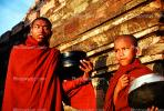 Boy, Monk, man, male, Shwezigon Pagoda, Bagan, RCTV06P13_05