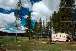 Trailer, Forest, Campsite, Evergreen Trees, RVCV01P06_08.2651