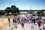 Crowds, tourist group, Parkfield, California