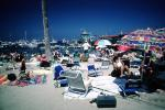 Beach, Parasol, Harbor, Avalon, Umbrella, Chairs, Crowded
