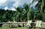 Lounge Chairs, Coconut Palm Trees, Barbados, 1950s