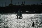 sailboat on the bay, SALV01P05_09