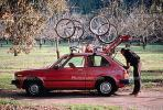 Bike Riders, Man, Woman, male, female, Honda Civic Car, SBYV01P03_16.2656