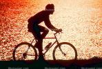 Man Riding Bicycle, Tiburon Linear Park, Bay, water, sunset, SBYV03P01_18B