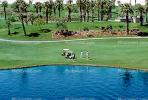 paths, water hazard, lake, golfer, golf cart, trees, Palm Desert, California